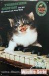 """Blechschild """"Wölfel-Bräu - Katze auf Klavier"""""""