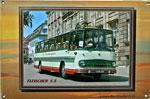 """Blechschild Bus """"Fleischer S 5"""""""