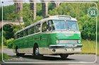 """Busblechschild Bus """"Ikarus 55 Regiobus"""""""