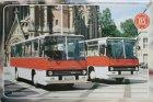 """Busblechschild Bus """"Ikarus 255"""""""