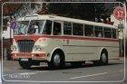 """Busblechschild Bus """"Ikarus 630"""""""