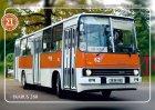 """Busblechschild Bus """"Ikarus 260"""""""
